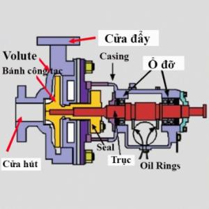 nguyên lý cấu tạo đồng hồ nước